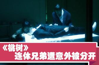 尚贤东贤遭意外被分开