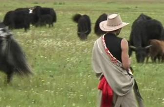 我眼中的美丽故乡-西藏