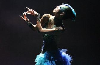 走向世界的孔雀皇后