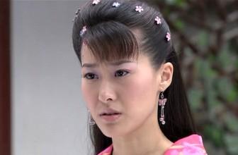 《粉蝶》电视剧11