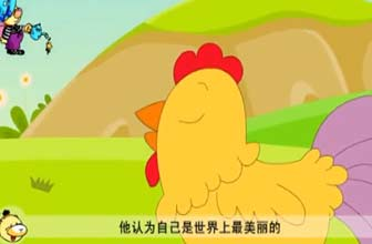 美丽的公鸡