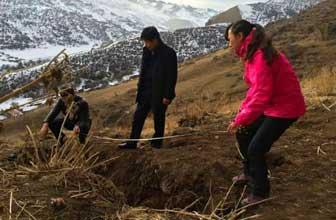 新疆地震危及岩画遗址