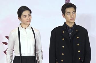 刘亦菲杨洋现身不惧演技被评